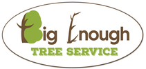 Big Enough Tree Service, LLC of Central Iowa